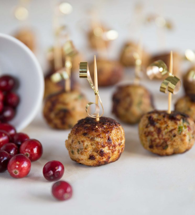 Sage and Cranberry Turkey Meatballs front on
