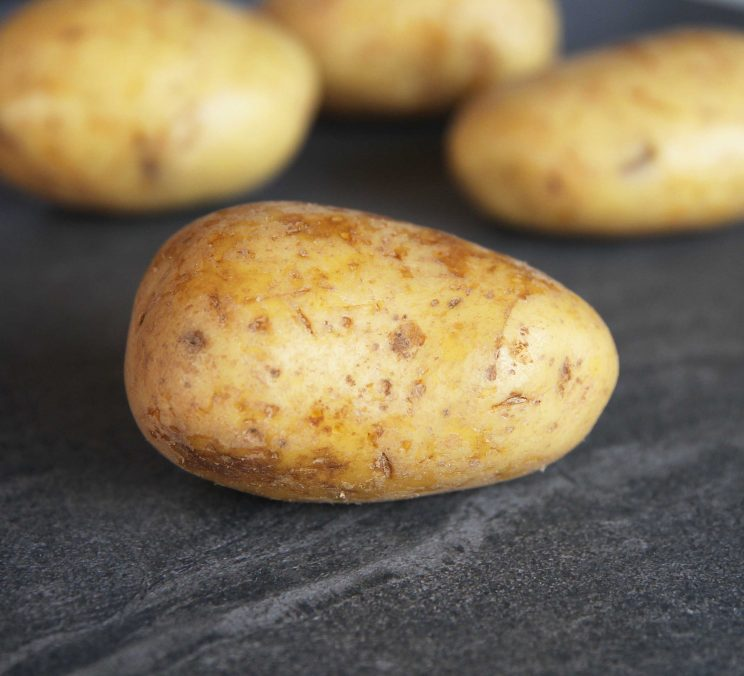 close up shot of raw potato with 3 more blurred in the background