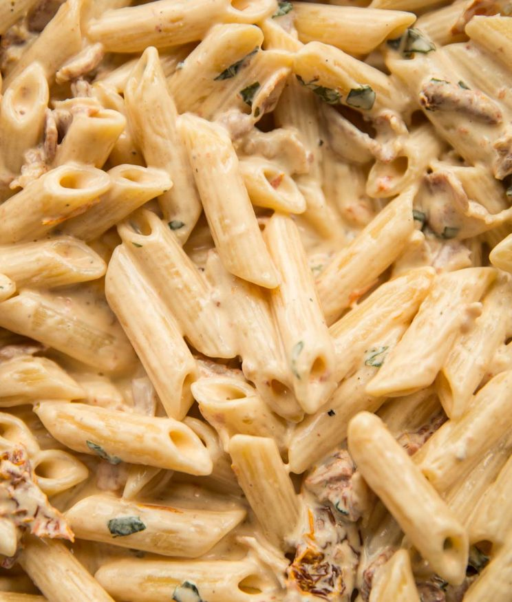 Closeup shot of Creamy Penne Alfredo with Sun Dried Tomato