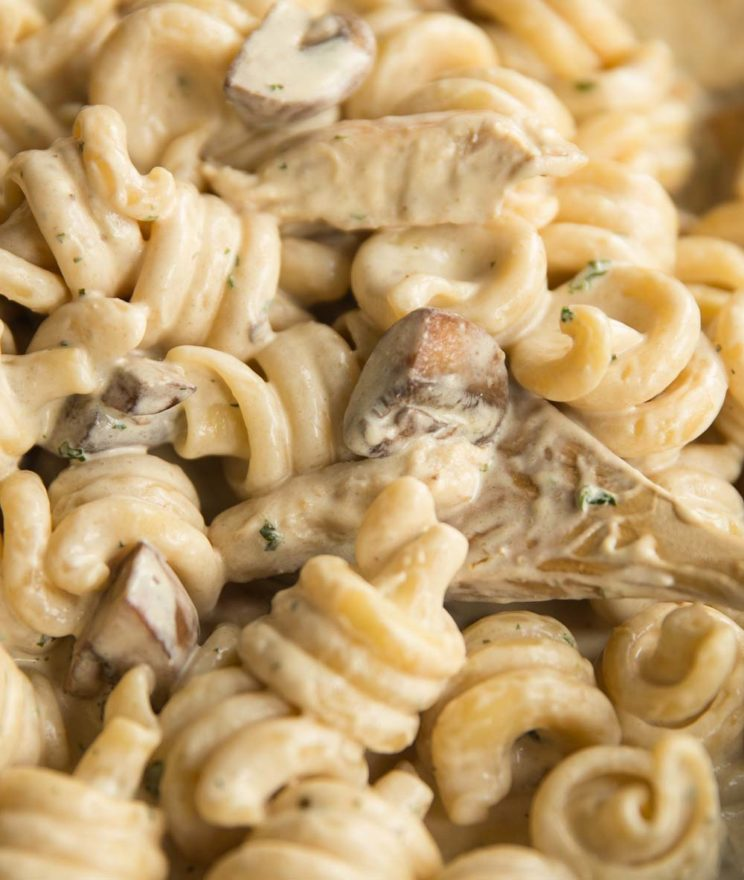 closeup shot of chicken mushroom pasta in skillet, focus on mushroom